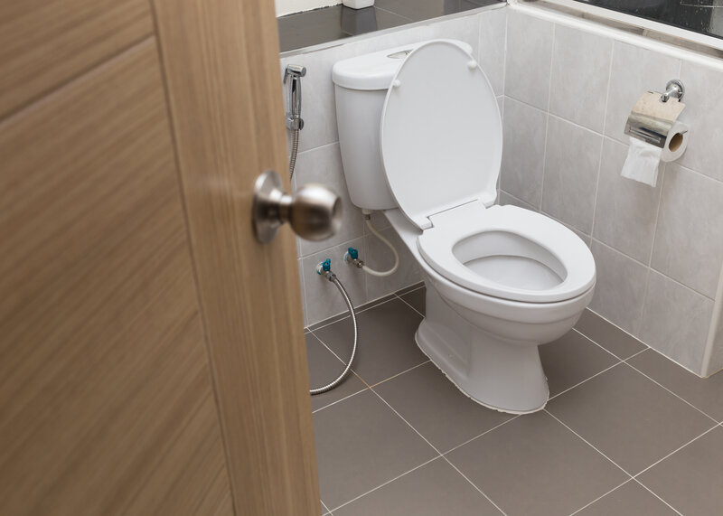 Toilet Inspection Martinsburg